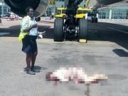 Tiếp viên hàng không tử nạn vì bước hụt ở cửa thoát hiểm