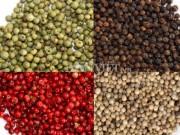 Giá tiêu còn 57.000 đ/kg, các  vua tiêu  chuyển sang… trồng bưởi