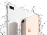 HOT: Apple khẩn cấp ngừng hoạt động sản xuất iPhone 8 trong 2 tuần