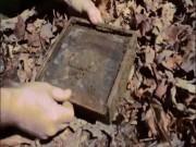 Điều bất ngờ dành cho cô gái theo bạn trai vào rừng tìm kho báu