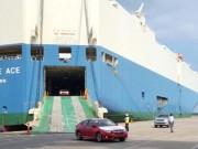 Một tuần, gần 350 ô tô nhập về Việt Nam