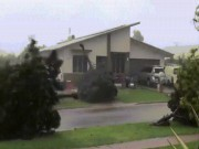 Xem siêu bão nhổ, cuốn bay cây cổ thụ ở Australia