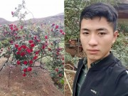 Thanh niên khốn đốn vì bị hiểu lầm là kẻ trộm cây hồng cổ 30 triệu