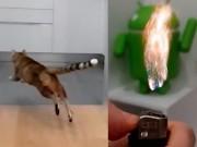 Video: Đã mắt với những thước phim quay siêu chậm bằng Samsung Galaxy S9+