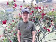 Chàng trai bị mất cây hồng cổ quý giá:  Đó là món quà cuối cùng của bố