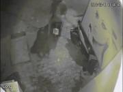 Chủ đang vuốt ve chó cưng trước cửa nhà, bất ngờ 2 thanh niên lao đến cướp