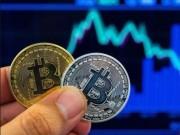 Giá Bitcoin tiếp tục sụt giảm, nhà đầu tư Việt run sợ