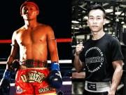 Nóng: Vua Muay Thái tới Việt Nam so tài Trần Văn Thảo vô địch boxing châu Á