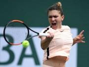 Cập nhật Miami Open ngày 2: Kerber thắng dễ, Halep vất vả ngược dòng