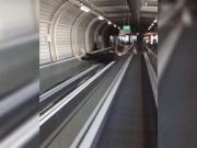 Bắt gặp những khoảnh khắc khó tin ở sân bay