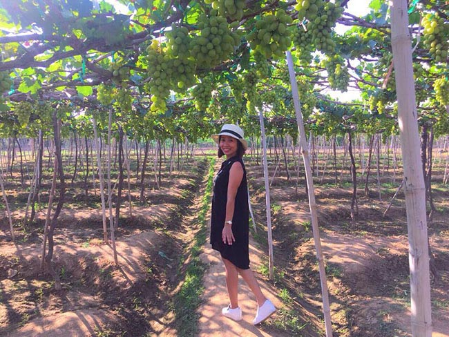 Về Ninh Thuận thỏa thích hái nho đầy túi, lại săn ảnh đẹp mang về - 4