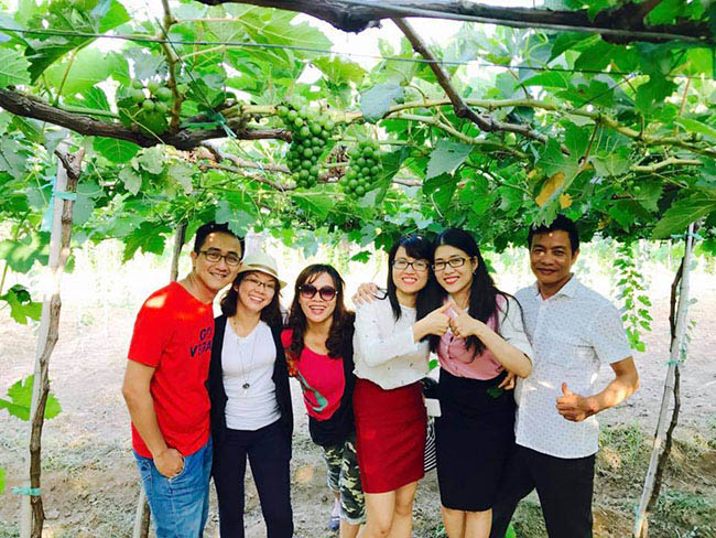 Về Ninh Thuận thỏa thích hái nho đầy túi, lại săn ảnh đẹp mang về - 9