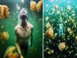 Choáng ngợp trước những hồ bơi tự nhiên đẹp nhất thế giới