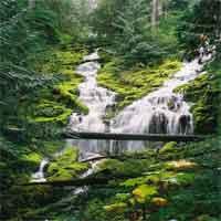 10 thác nước cao nhất thế giới