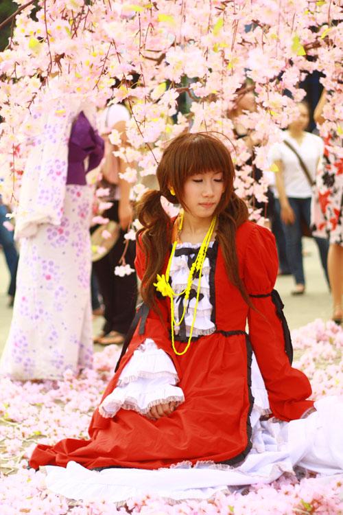 Những hình ảnh ấn tượng ở lễ hội Satsuki - 12