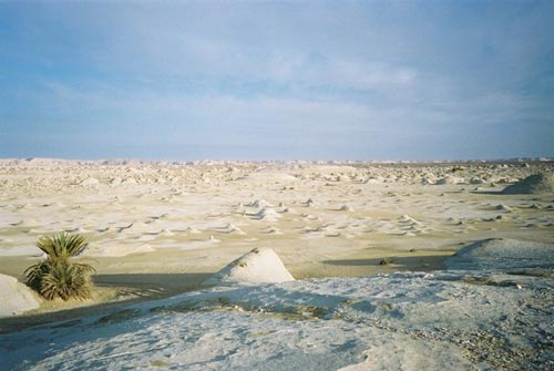 Sa mạc trắng huyền bí ở Ai Cập - 3