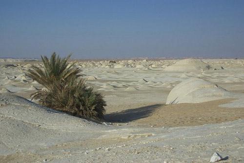 Sa mạc trắng huyền bí ở Ai Cập - 9