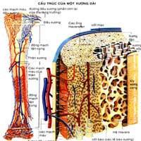 Cách khắc phục trẻ còi xương, suy dinh dưỡng