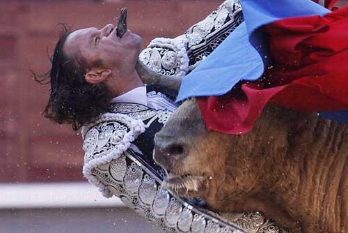 Thể thao: Tai nạn kinh hoàng tại môn đấu bò tót - 2