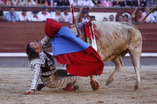 Thể thao: Tai nạn kinh hoàng tại môn đấu bò tót - 3