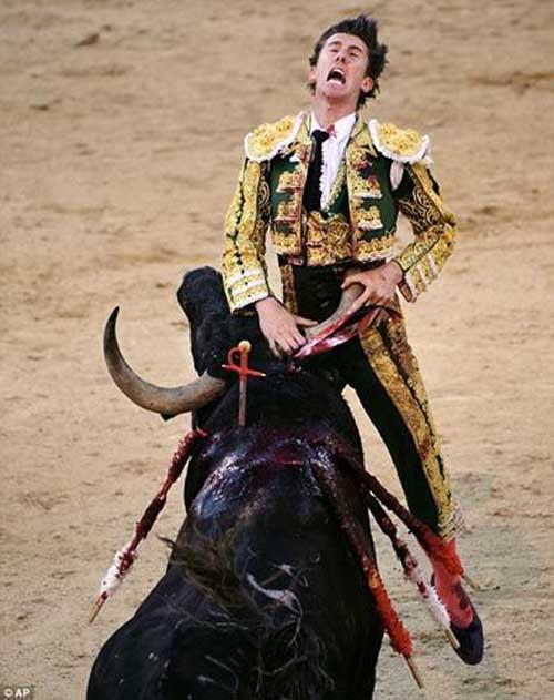 Thể thao: Tai nạn kinh hoàng tại môn đấu bò tót - 5