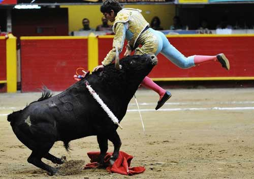 Thể thao: Tai nạn kinh hoàng tại môn đấu bò tót - 8