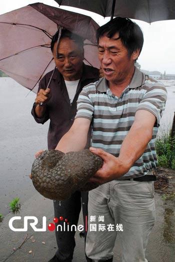 Phát hiện thuỷ quái tại Trung Quốc - 2
