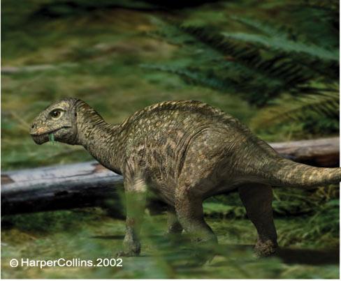 Những điều chưa biết về khủng long - 1