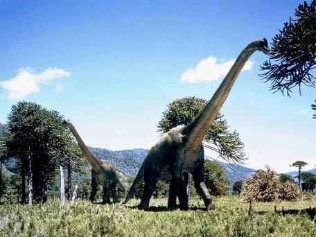 Những điều chưa biết về khủng long - 2