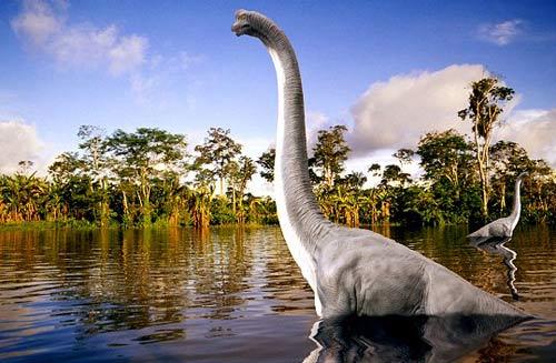 Những điều chưa biết về khủng long - 3