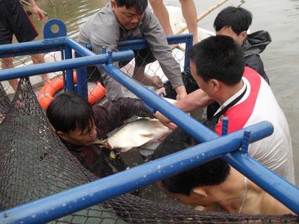 Chùm ảnh: Diễn tập nước rút bắt Cụ Rùa - 12