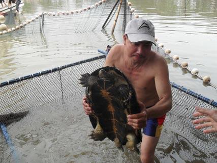 Chùm ảnh: Diễn tập nước rút bắt Cụ Rùa - 13