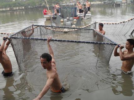 Chùm ảnh: Diễn tập nước rút bắt Cụ Rùa - 6