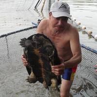 Chùm ảnh: Diễn tập nước rút bắt Cụ Rùa