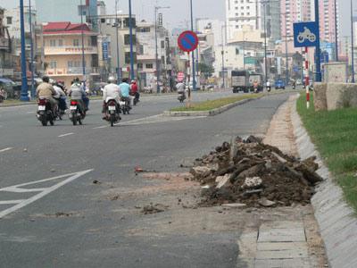 Chùm ảnh: Nhếch nhác đại lộ đẹp nhất Tp HCM - 4