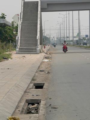 Chùm ảnh: Nhếch nhác đại lộ đẹp nhất Tp HCM - 7
