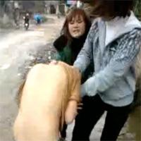 Nữ sinh cởi áo, đánh ghen bạn giữa phố