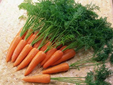 Trẻ ngộ độc củ dền, cà rốt - 1