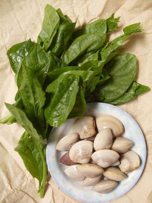 Mát lành canh ngao nấu rau mùng tơi - 1