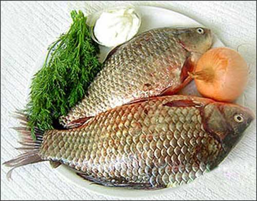 Những món ngon nhất từ cá chép - 1