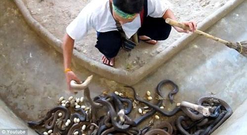 Video: Xem nghề nguy hiểm nhất thế giới - 1