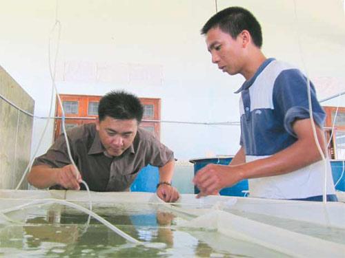 Kỹ sư Việt nuôi hải sâm số một thế giới - 1