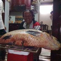 Bắt được cá trắm đen siêu khủng nặng 56kg