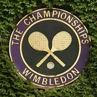 Lịch thi đấu Wimbledon 2011: Chung kết (Đơn nam)