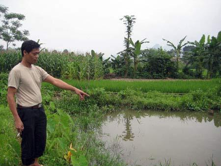 Bán nhà để săn lùng kho báu ở Hà Giang - 1