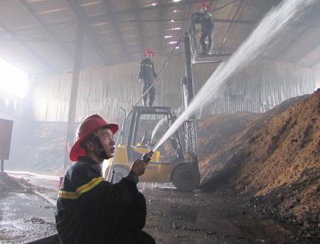 Nghệ An: Cháy lớn ở nhà máy gỗ - 2