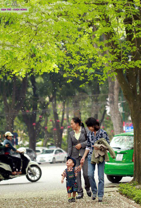 Khoảnh khắc Hà Nội thay áo mới - 5
