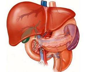 Điều trị dứt điểm bệnh gan bằng thuốc Nam - 1