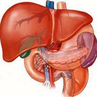 Điều trị dứt điểm bệnh gan bằng thuốc Nam