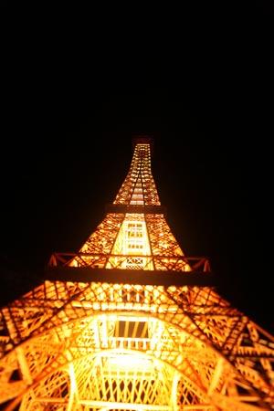 Kỷ lục Việt Nam: Mô hình tháp Eiffel bằng tăm lớn nhất - 1